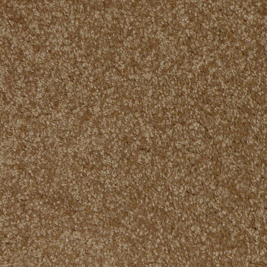 STAINMASTER Ryland Paw Print Cut Pile Indoor Carpet