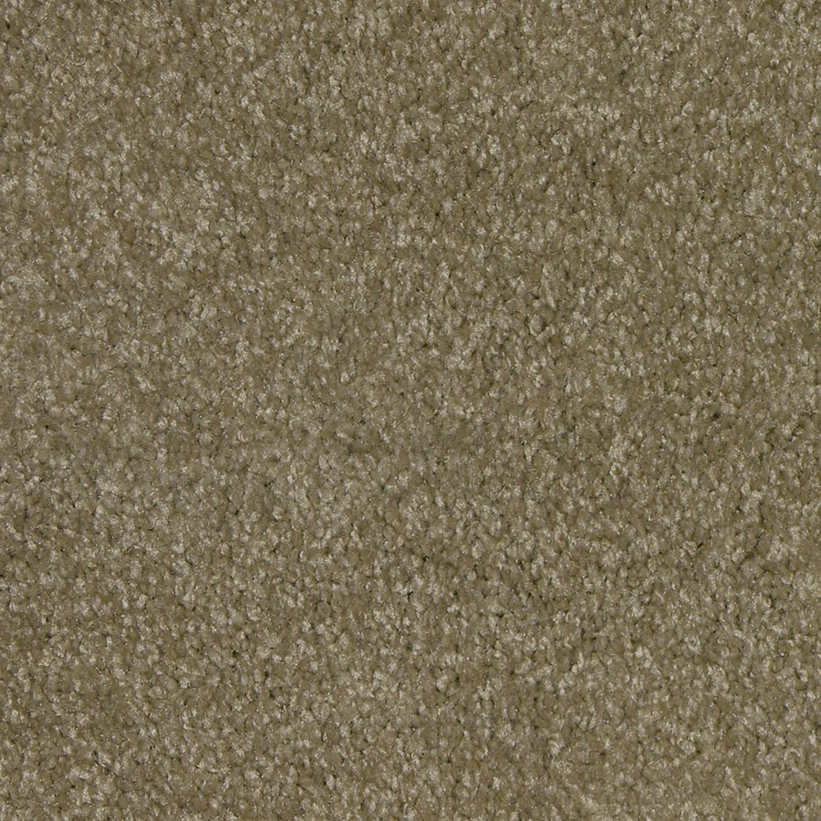 STAINMASTER Ryland Fawn Lace Cut Pile Indoor Carpet