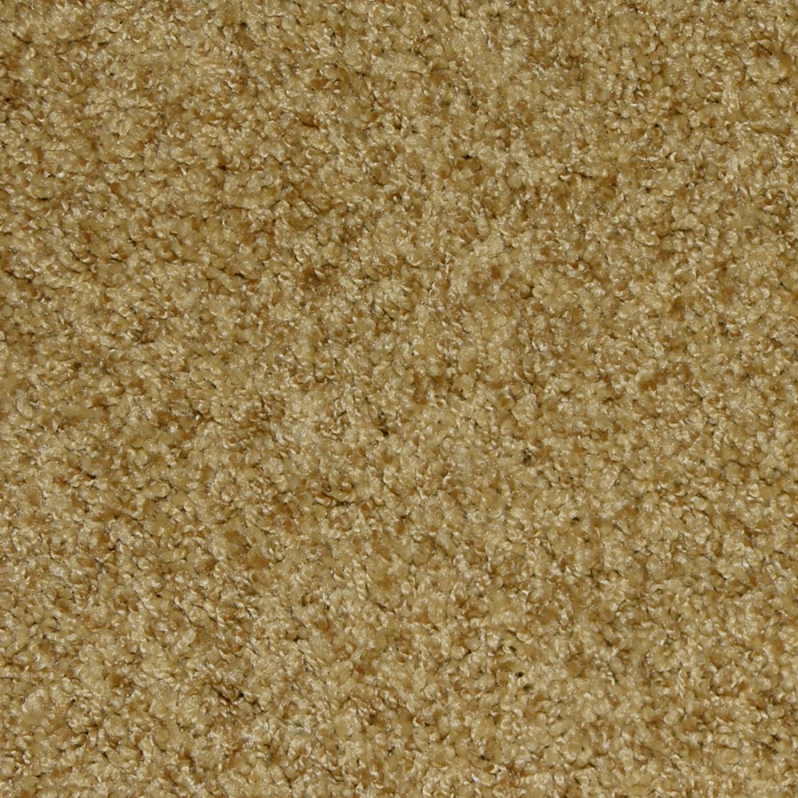 Snmaster Berber Carpet Colors Carpet Vidalondon