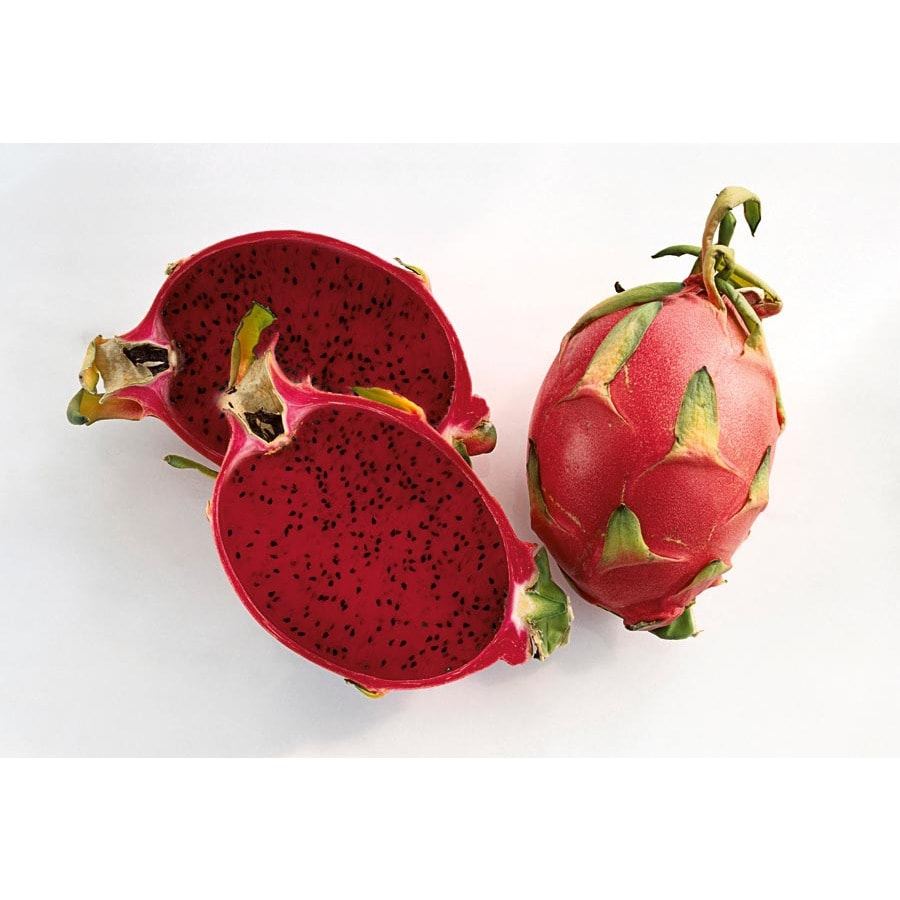 1.5-Gallon Dragon Fruit (Red Flesh) Small Fruit (L21823)