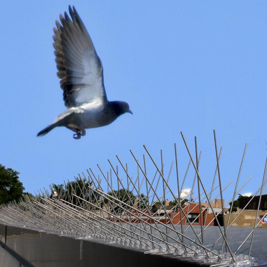 Bird-X 4.3-in H 1200-in L Bird Repelling Spikes