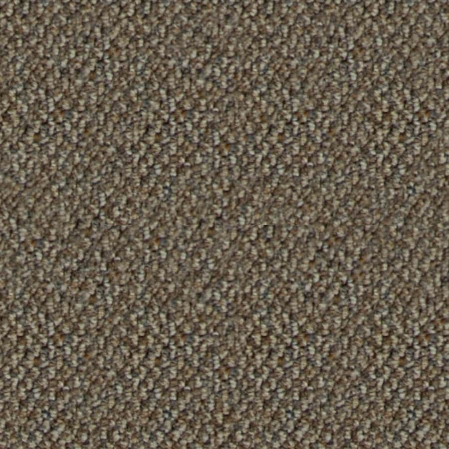 Shop home and office taupe shadow berber indoor carpet at for Taupe color carpet