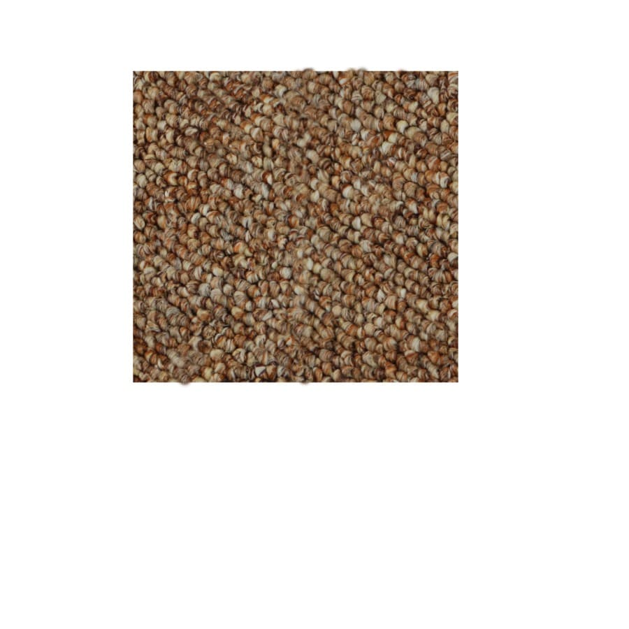 Shop home and office paprika berber indoor outdoor carpet for Indoor out door carpet