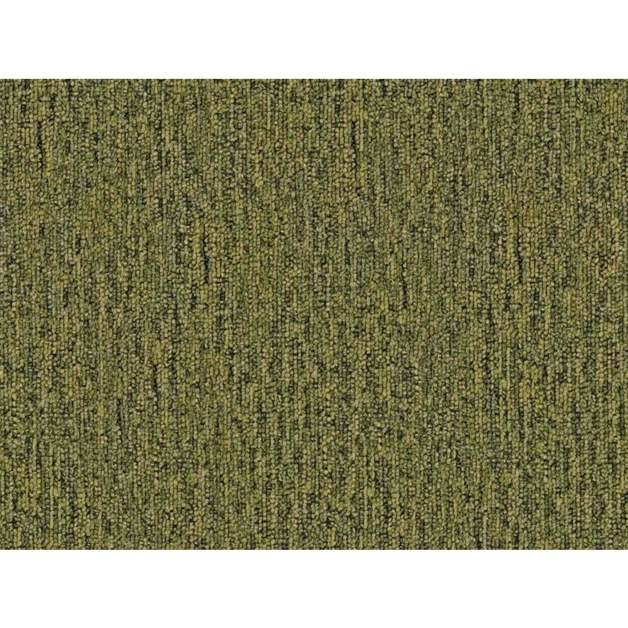 Home and Office Sapling Berber Indoor Carpet