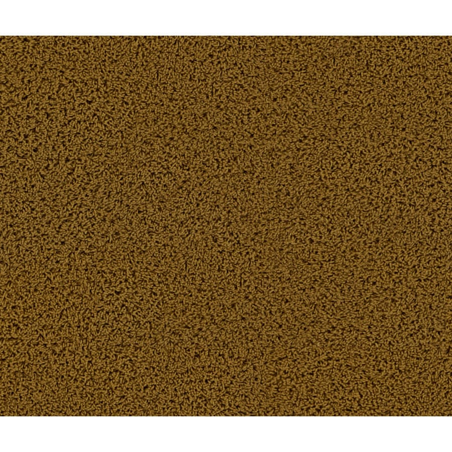 STAINMASTER Appealing Shelby Frieze Indoor Carpet