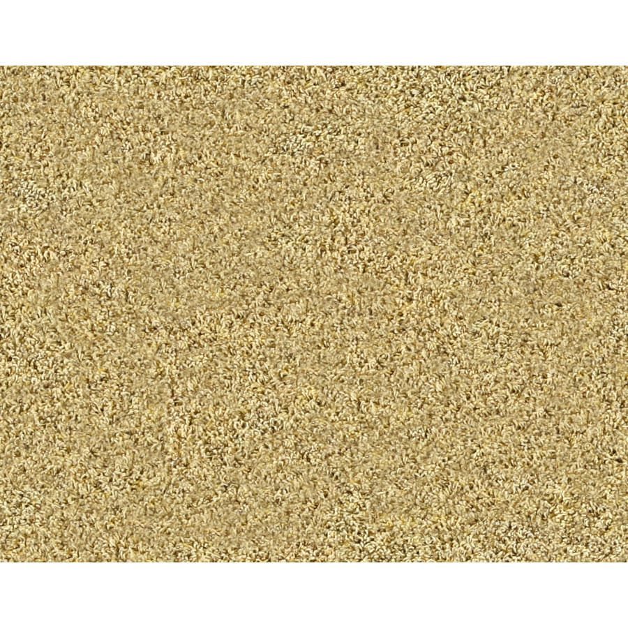 STAINMASTER Active Family Gleaming Bethany Frieze Indoor Carpet