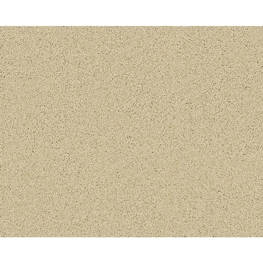 STAINMASTER Active Family Fresh Breeze Newburgh Textured Indoor Carpet