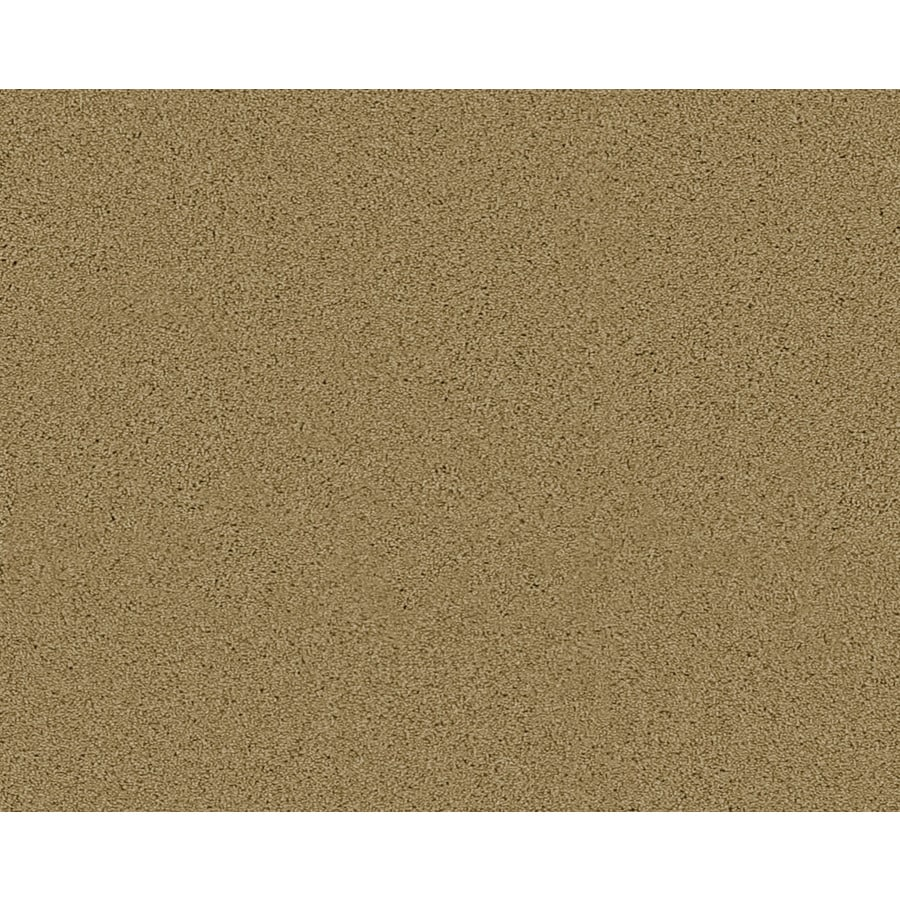 STAINMASTER Active Family Fresh Breeze Carmel Textured Indoor Carpet