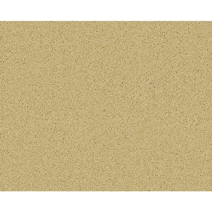 STAINMASTER Active Family Fresh Breeze Clinton Textured Indoor Carpet
