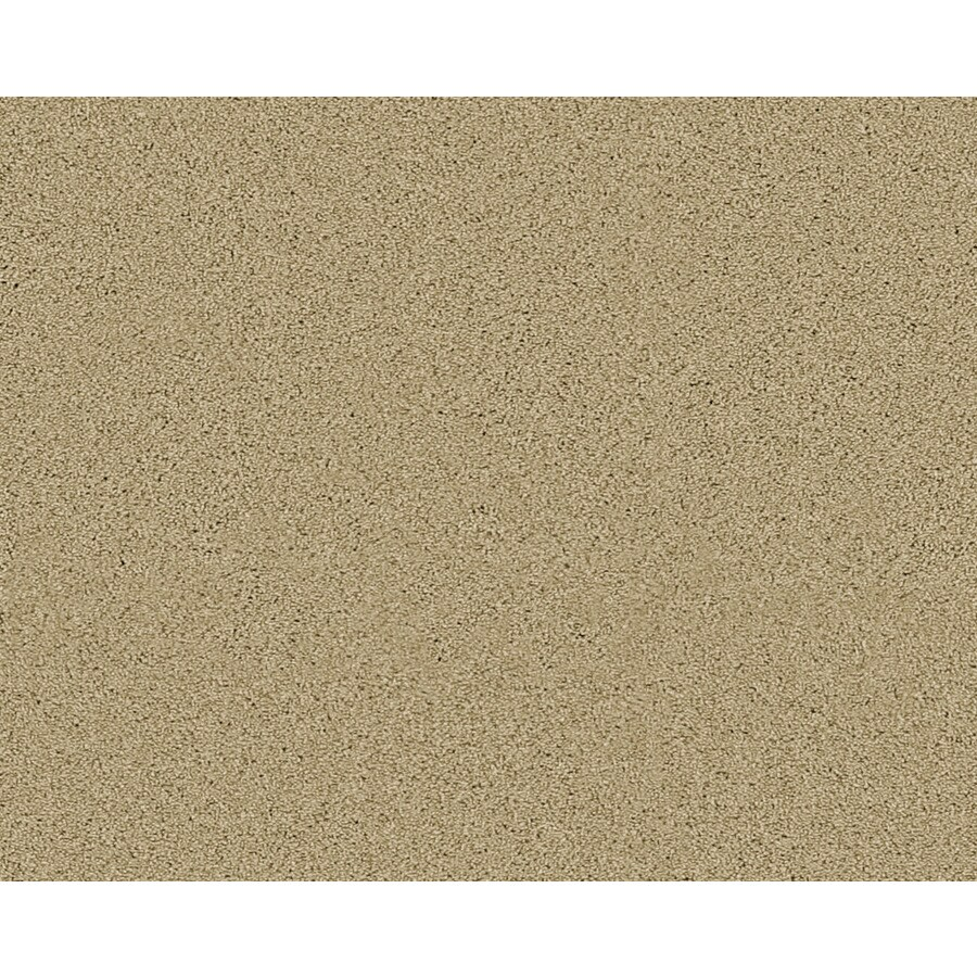 STAINMASTER Active Family Fresh Breeze Oakdale Textured Indoor Carpet
