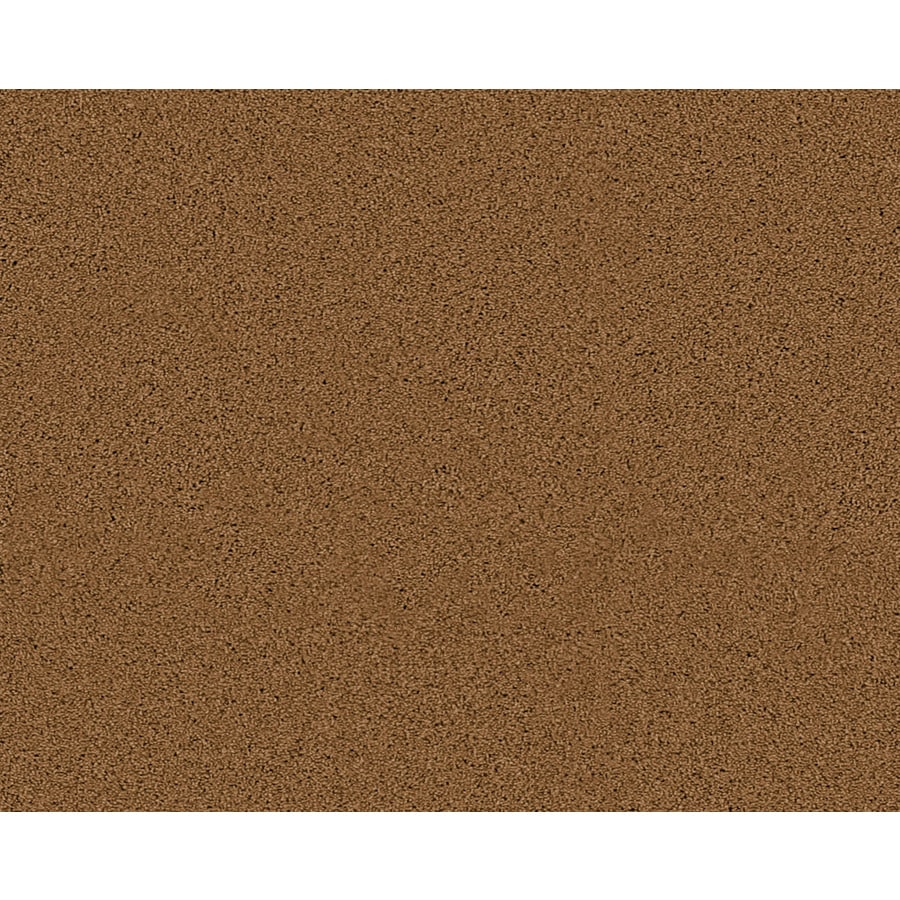 STAINMASTER Active Family Fresh Breeze Corinth Textured Indoor Carpet