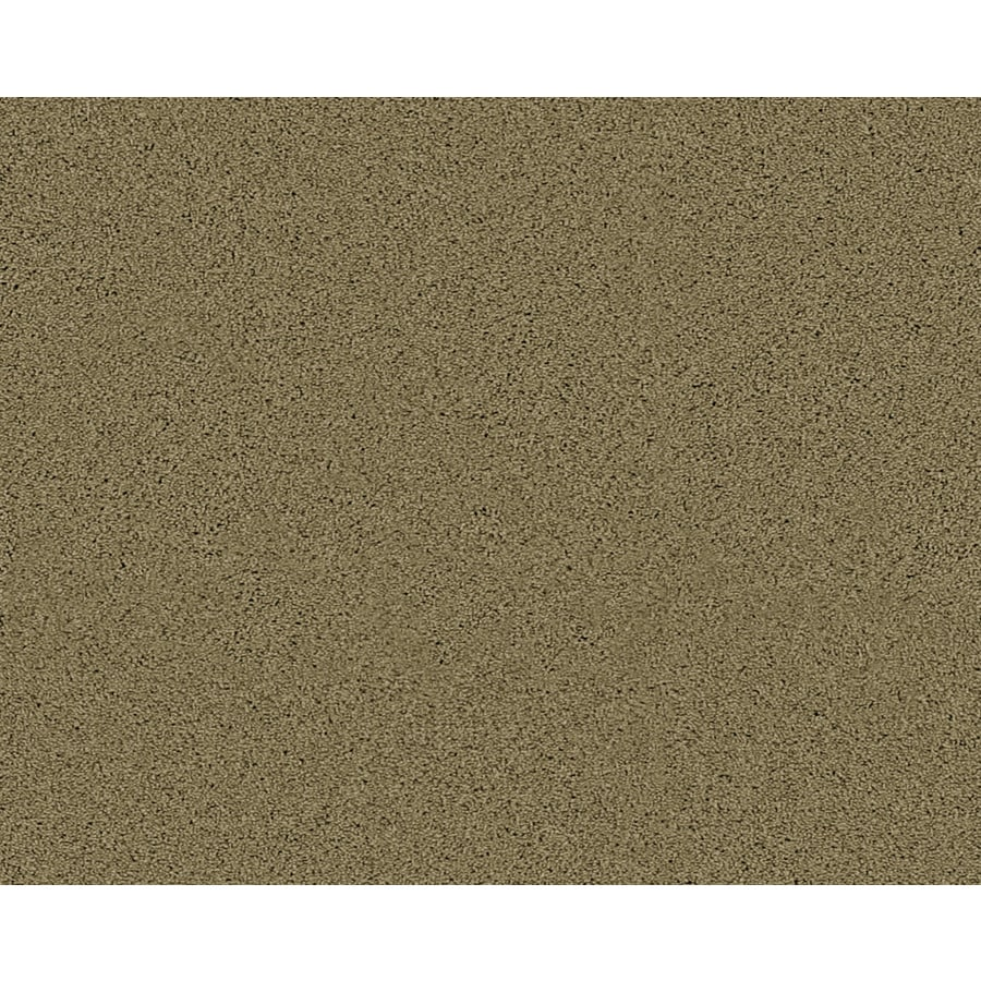 STAINMASTER Active Family Fresh Breeze Rockland Textured Indoor Carpet