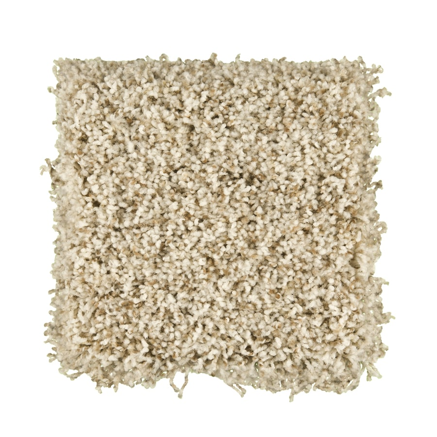 STAINMASTER Active Family Exemplary Dreamscape Textured Indoor Carpet