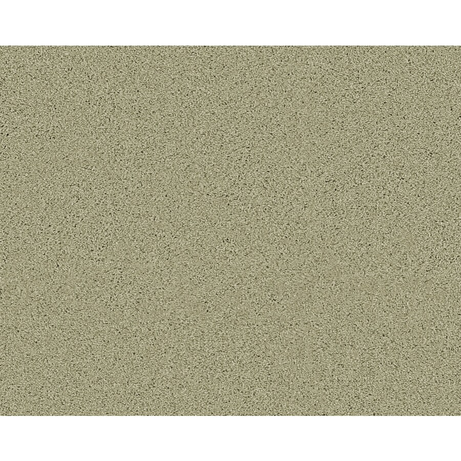 Coronet Active Family Exalted Greenfield Textured Indoor Carpet
