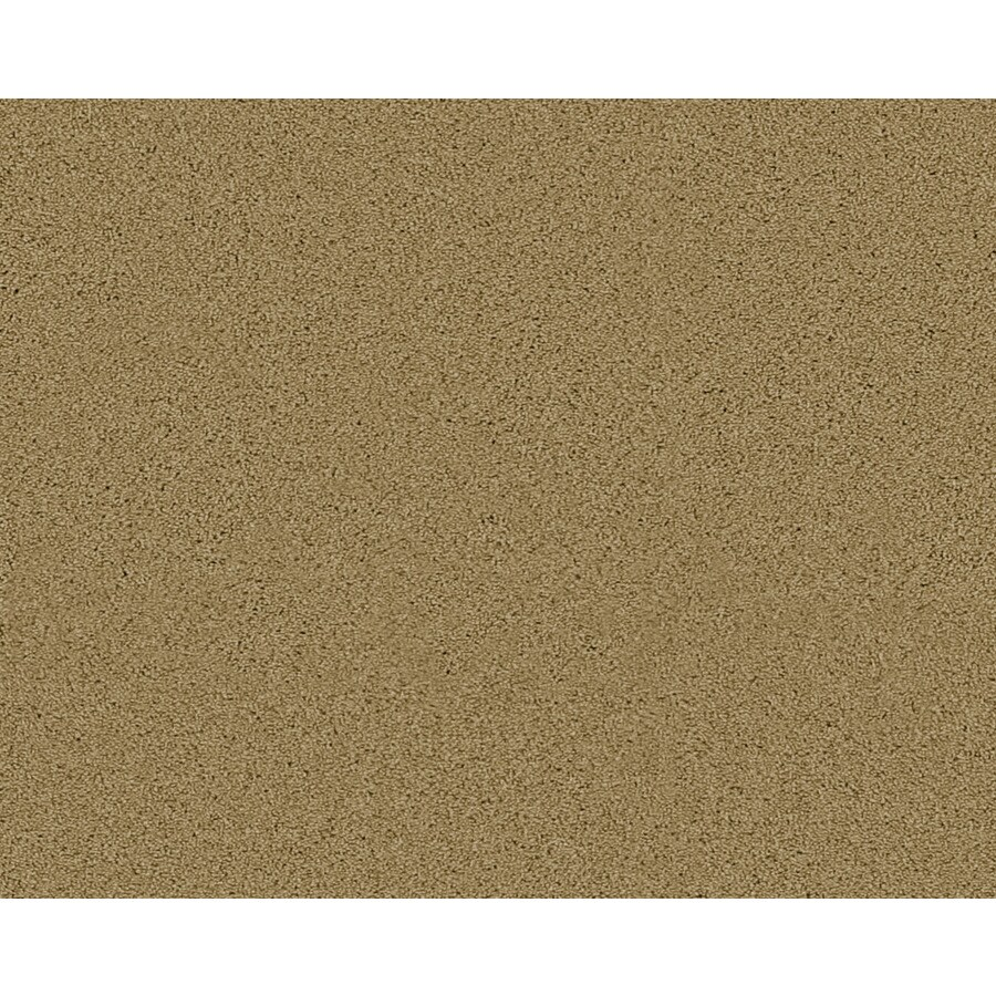 Coronet Active Family Exalted Overland Textured Indoor Carpet