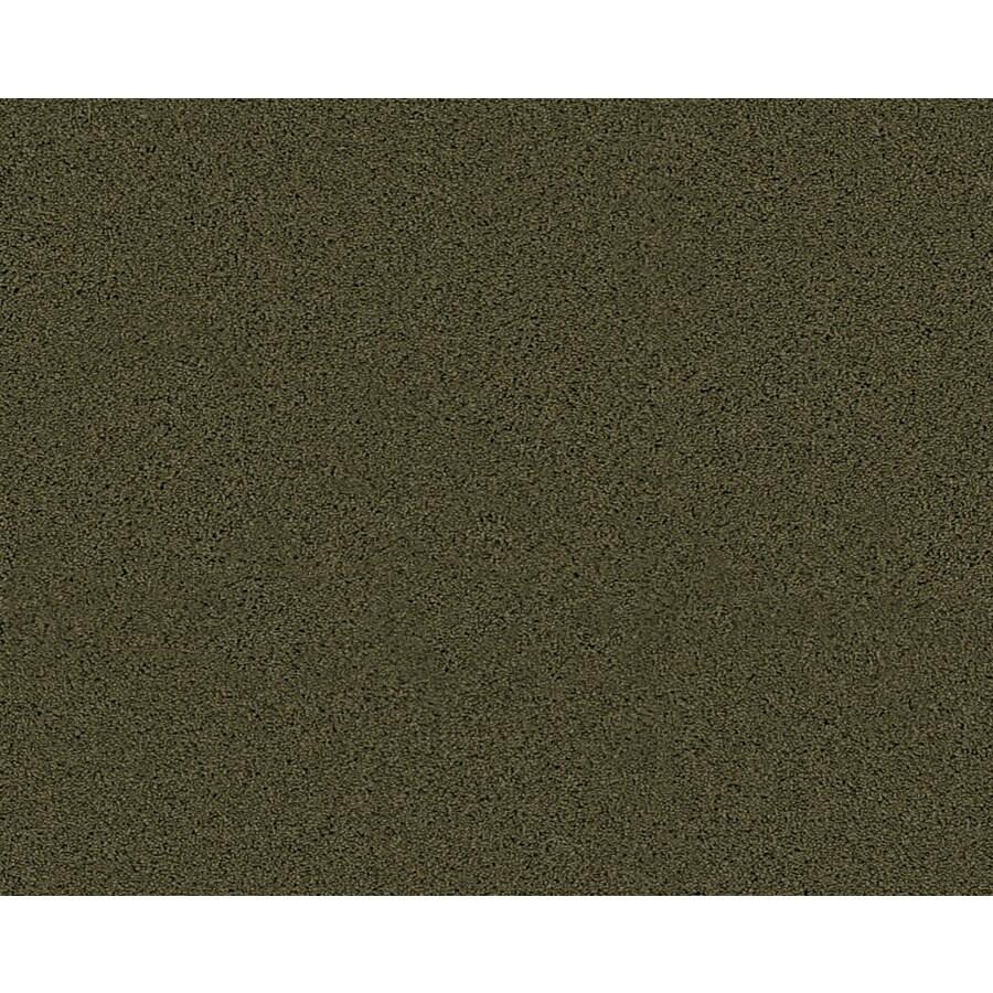 Coronet Active Family Exalted Midway Textured Indoor Carpet