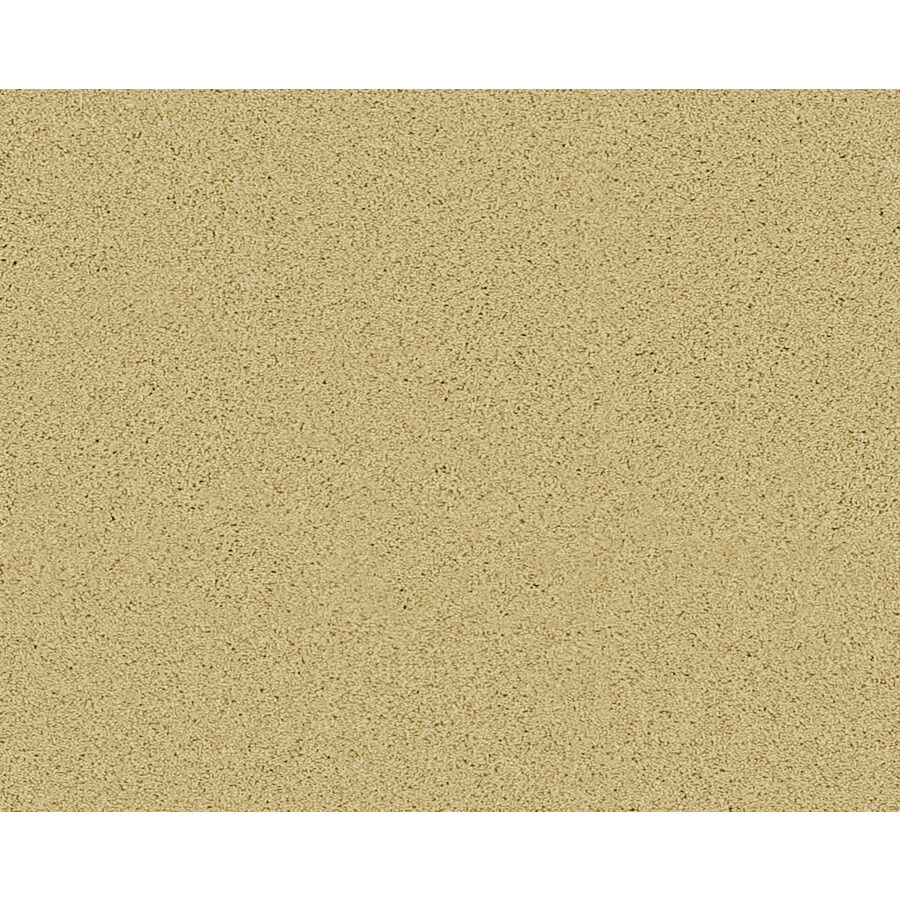 Coronet Active Family Exhilarated Hopi Textured Indoor Carpet