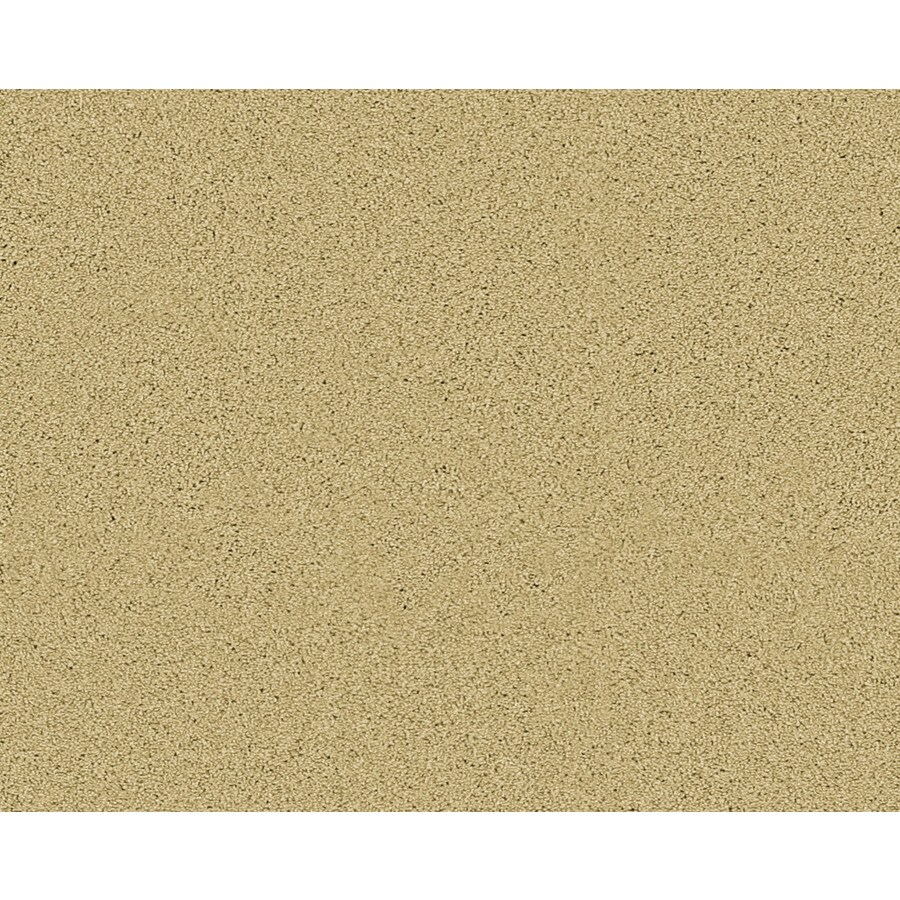 Coronet Active Family Exhilarated Legend Textured Indoor Carpet