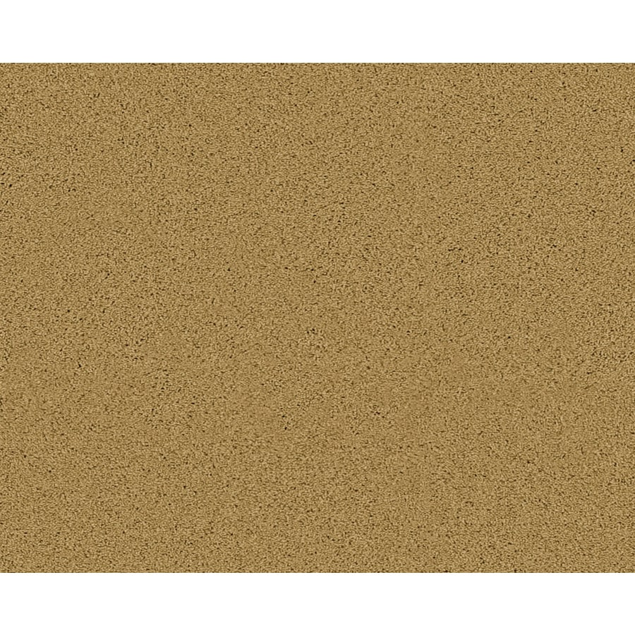 Coronet Active Family Exhilarated Ironwood Textured Indoor Carpet