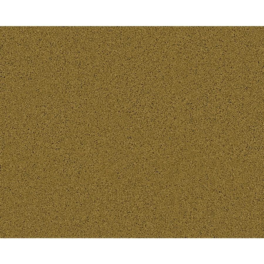 Coronet Active Family Exhilarated Marsh Textured Indoor Carpet