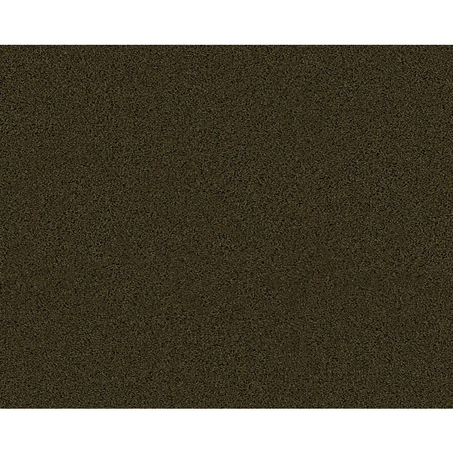 Coronet Active Family Euphoria II Sycamore Textured Indoor Carpet