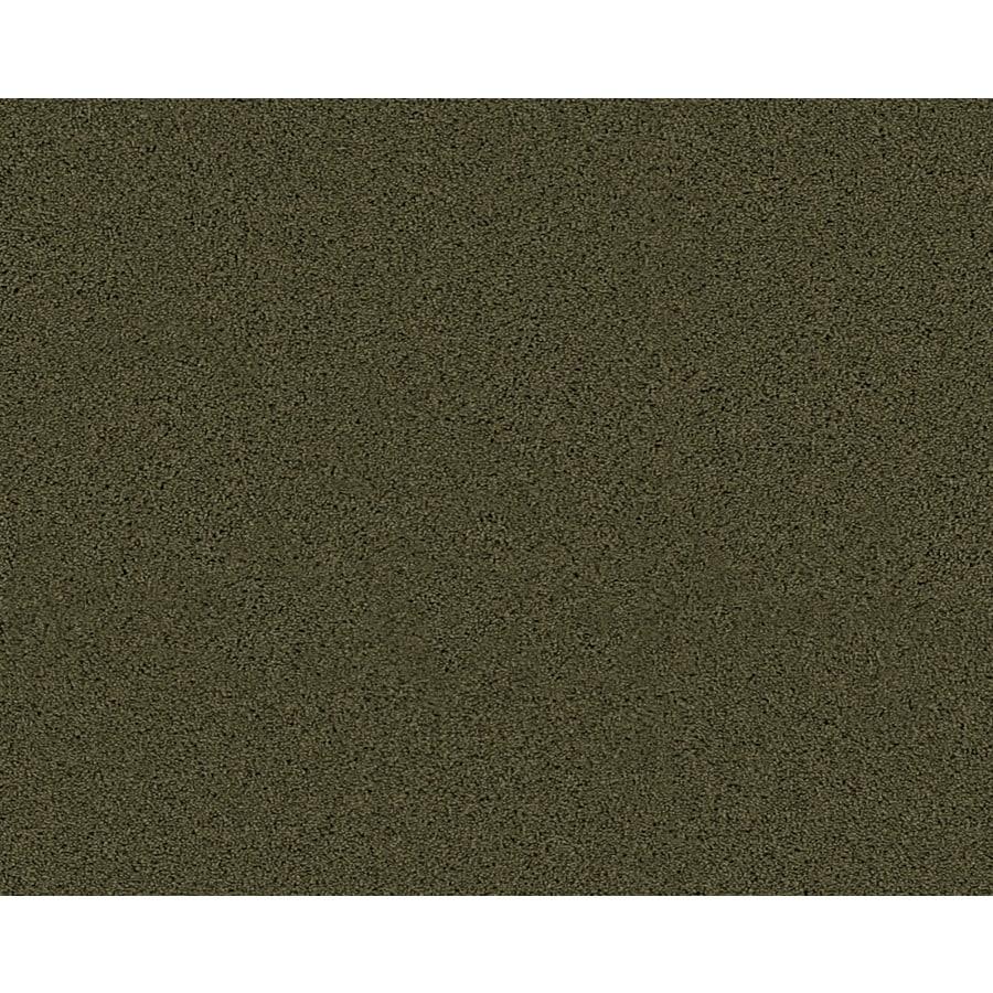 Coronet Active Family Euphoria II Midway Textured Indoor Carpet