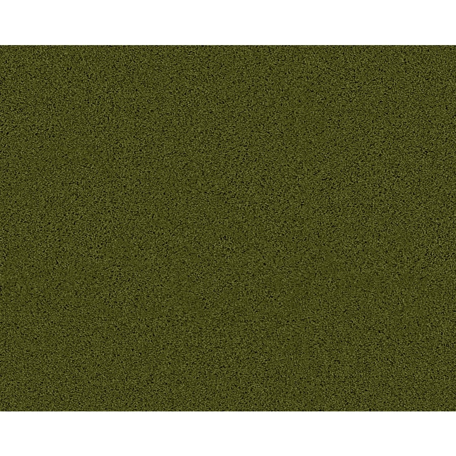 Coronet Active Family Euphoria II Hillside Textured Indoor Carpet