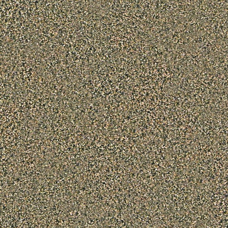 Coronet Simple Select Aspen Textured Indoor Carpet