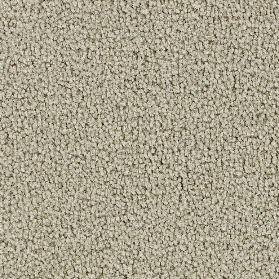 Coronet Feature Buy Sandy Beach Textured Indoor Carpet