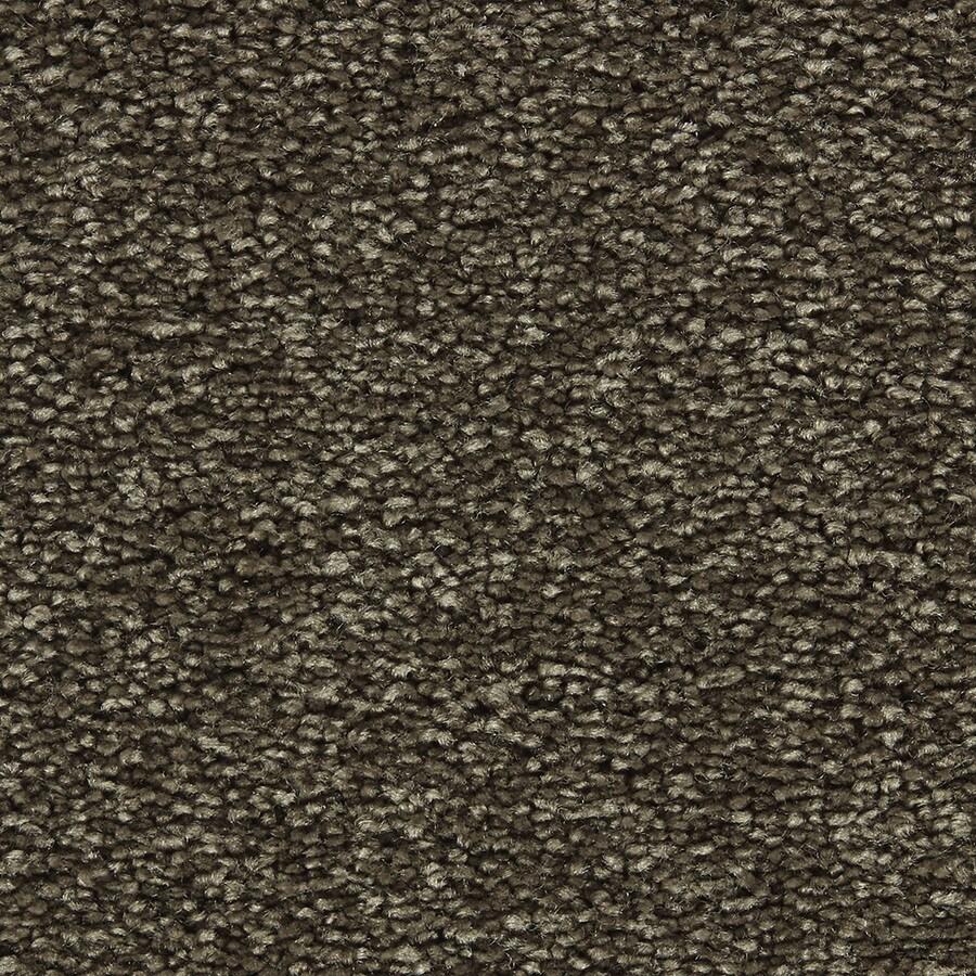 Coronet Centric I Double Espresso Textured Indoor Carpet