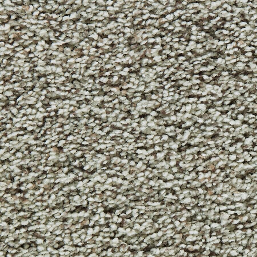 Coronet Enchantress Owlet Textured Indoor Carpet