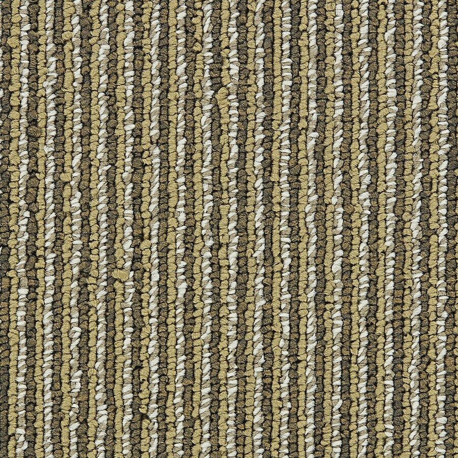 Coronet Promoter 18-Pack 24-in x 24-in Raise In Pay Indoor Berber Glue-Down Carpet Tile