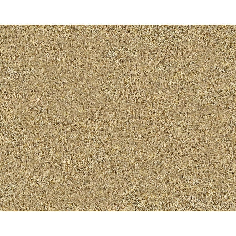 STAINMASTER Peace Of Mind Mission Frieze Indoor Carpet At Lowescom