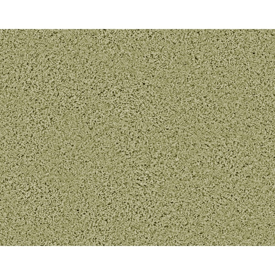STAINMASTER Active Family Densmore Creek Green Frieze Indoor Carpet