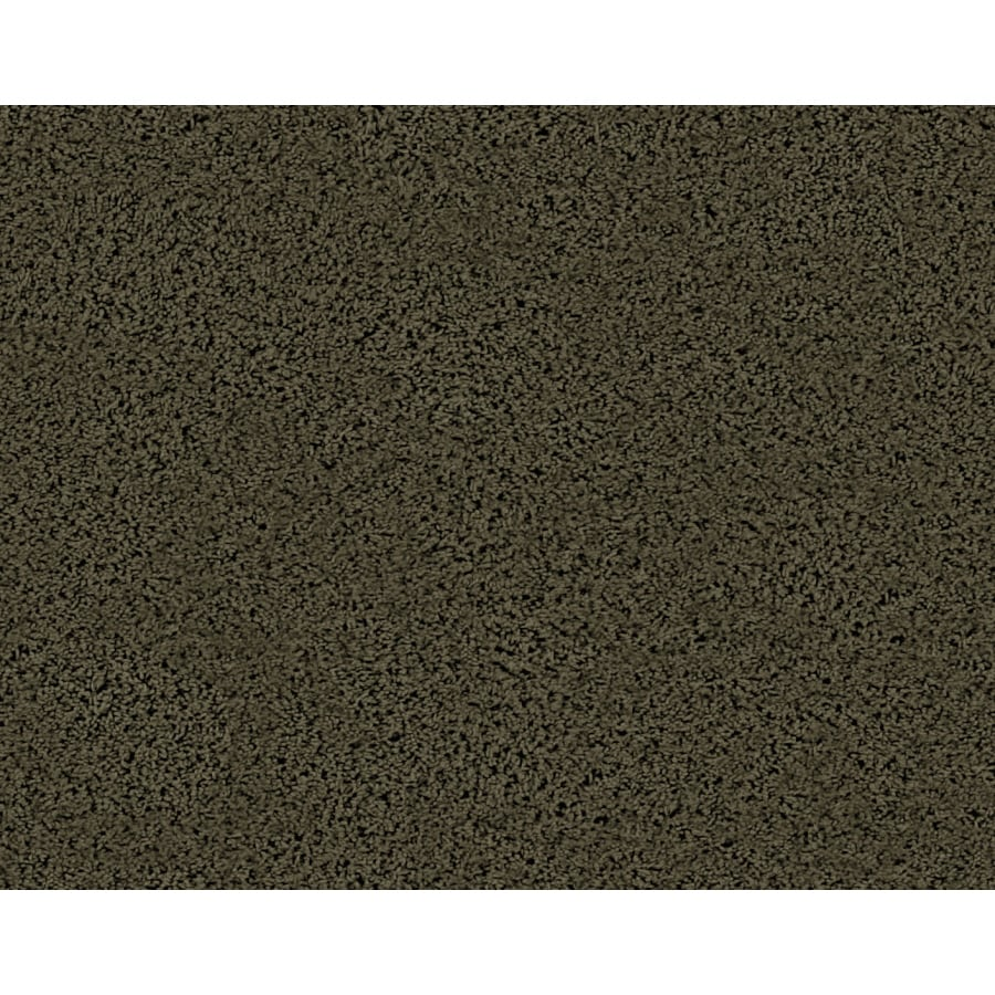 STAINMASTER Active Family Densmore Creek Sycamore Frieze Indoor Carpet
