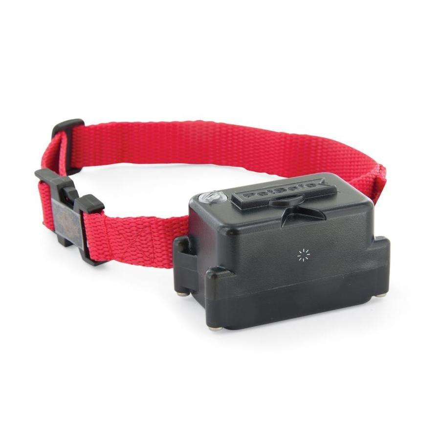 PetSafe Static Pet Fence Receiver Collar