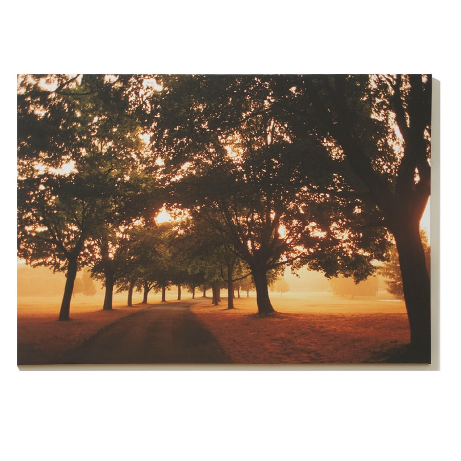 Graham & Brown 40-in W x 28-in H Canvas Wall Art