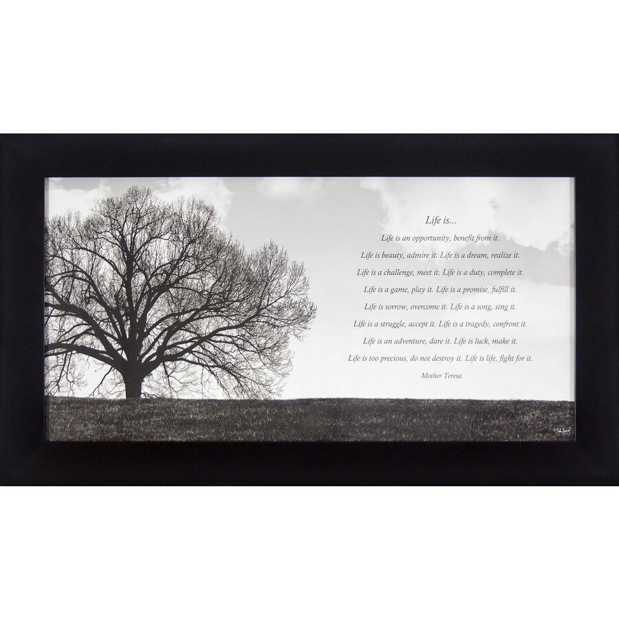 28.5-in W x 16.5-in H Framed Inspirational Wall Art
