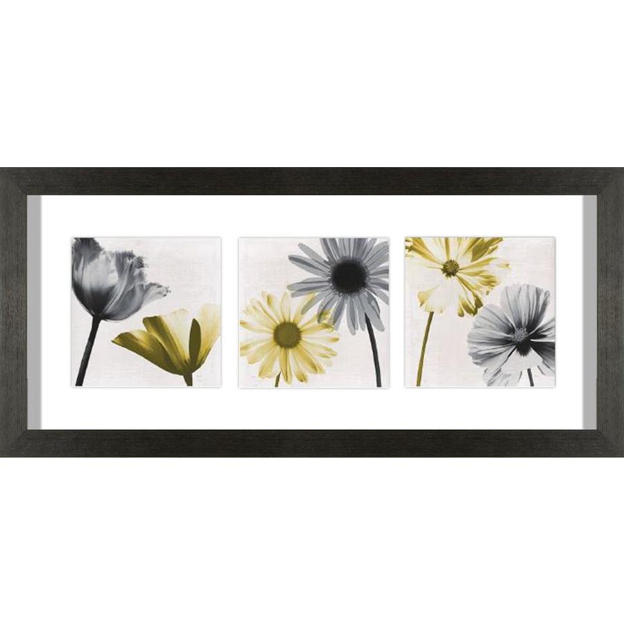 26-in W x 12-in H Framed Photography Wall Art