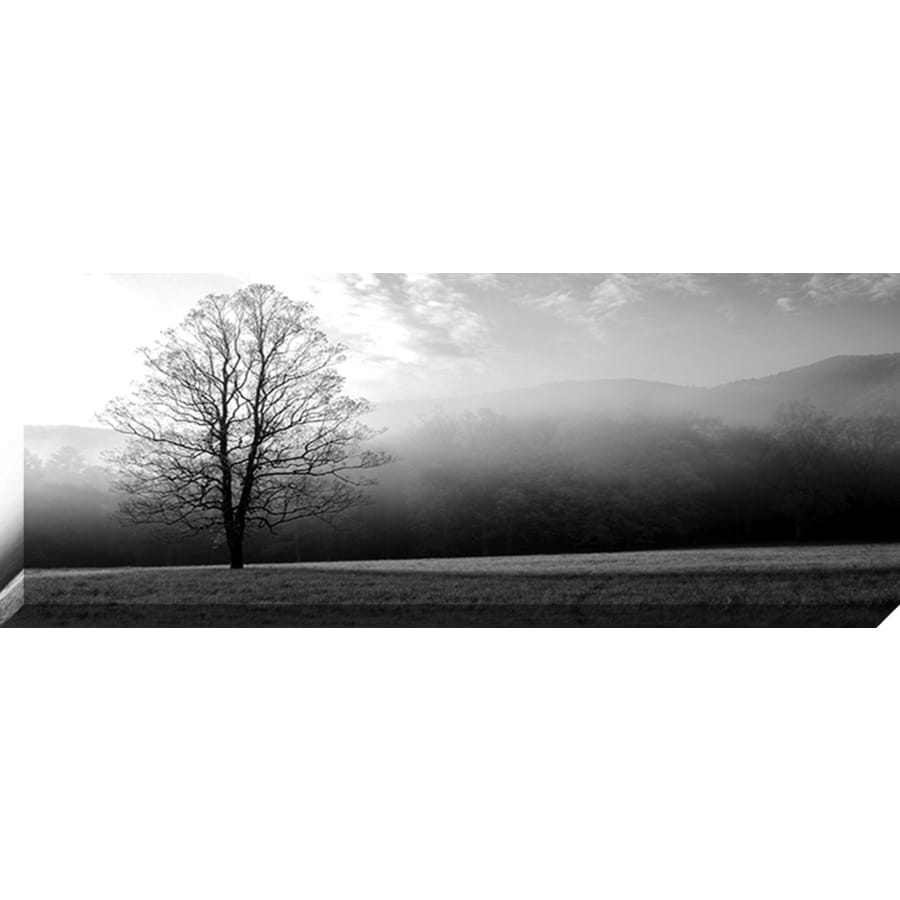 37-in W x 14-in H Canvas Photography Wall Art