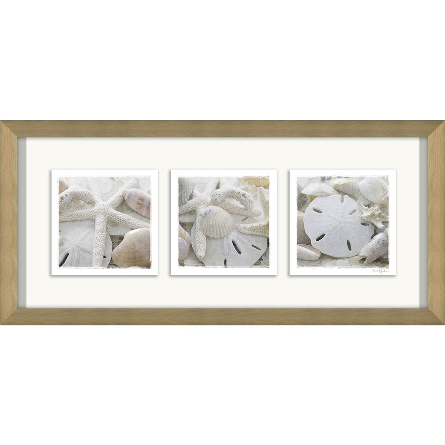 26-in W x 12-in H Framed Plastic Photography Prints Wall Art