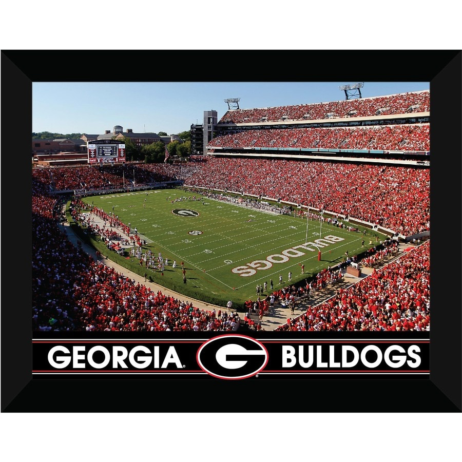 shop 22 in w x 18 in h georgia bulldogs framed art at With kitchen cabinets lowes with georgia bulldogs wall art