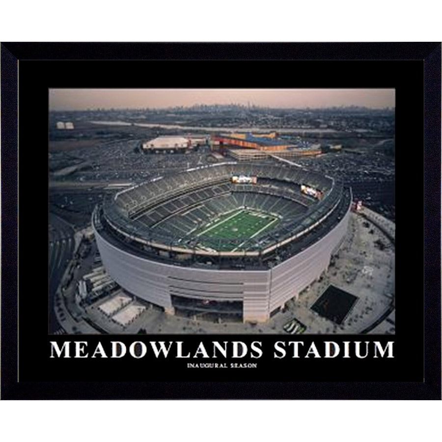 32-in W x 26-in H Meadowlands Framed Art