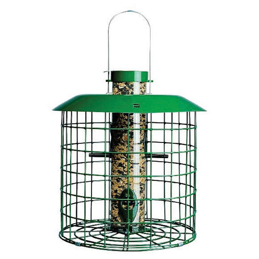 Duncraft Accent Selective Metal Squirrel-Resistant Tube Bird Feeder