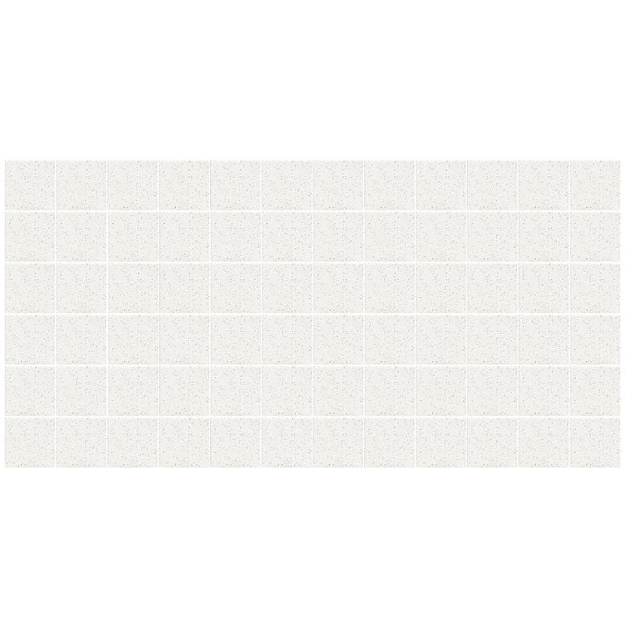 American Olean Unglazed Porcelain Mosaics 12-Pack Salt and Pepper Uniform Squares Mosaic Thru Body Porcelain Floor and Wall Tile (Common: 12-in x 24-in; Actual: 11.93-in x 23.93-in)