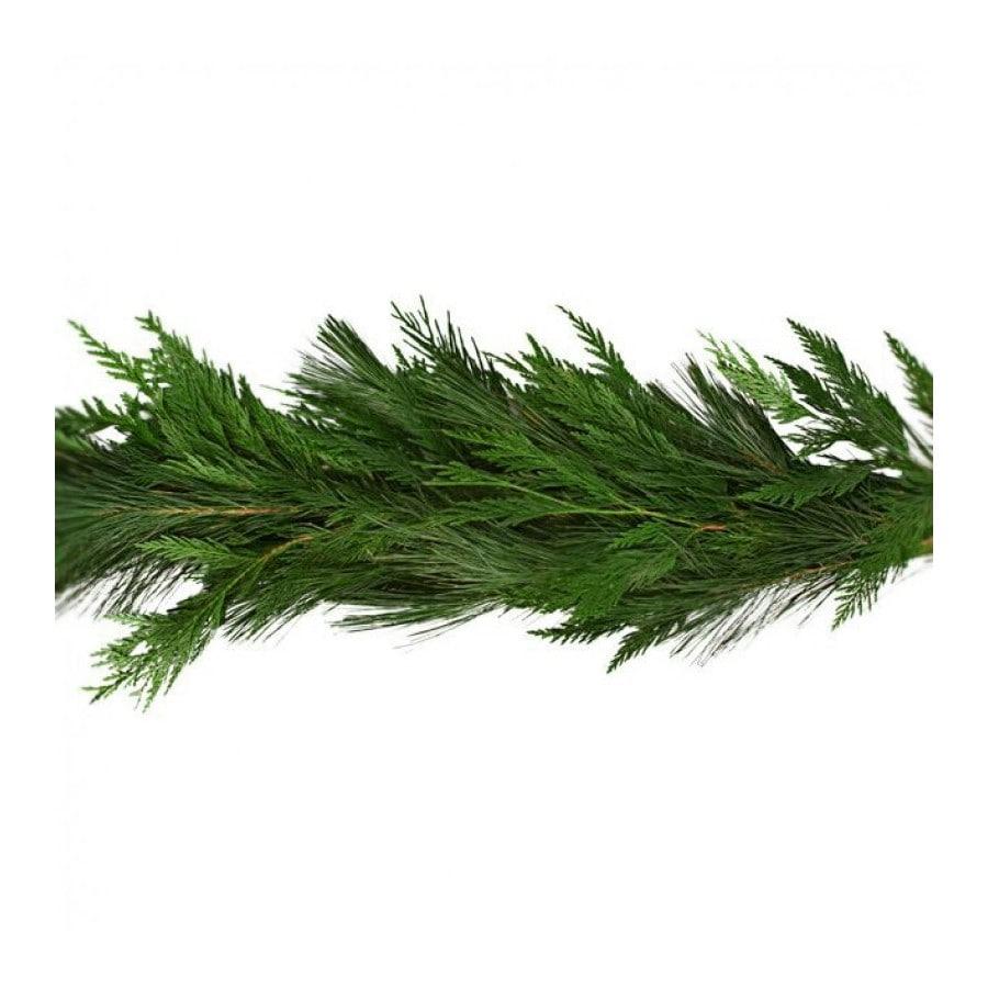 20-ft Fresh White Pine Christmas Garland