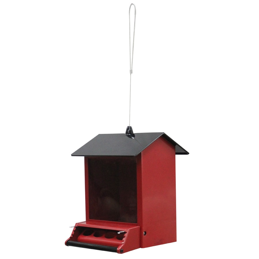 Shop garden treasures metal squirrel resistant hopper bird feeder at lowes com