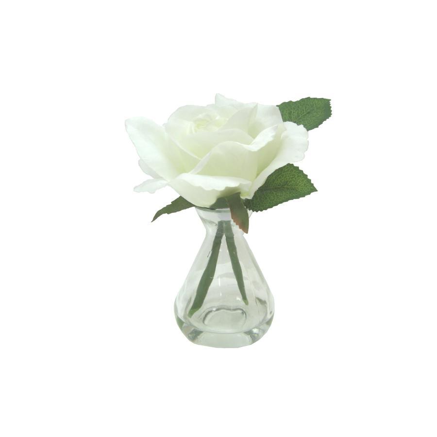 allen + roth 6.75-in White Rose