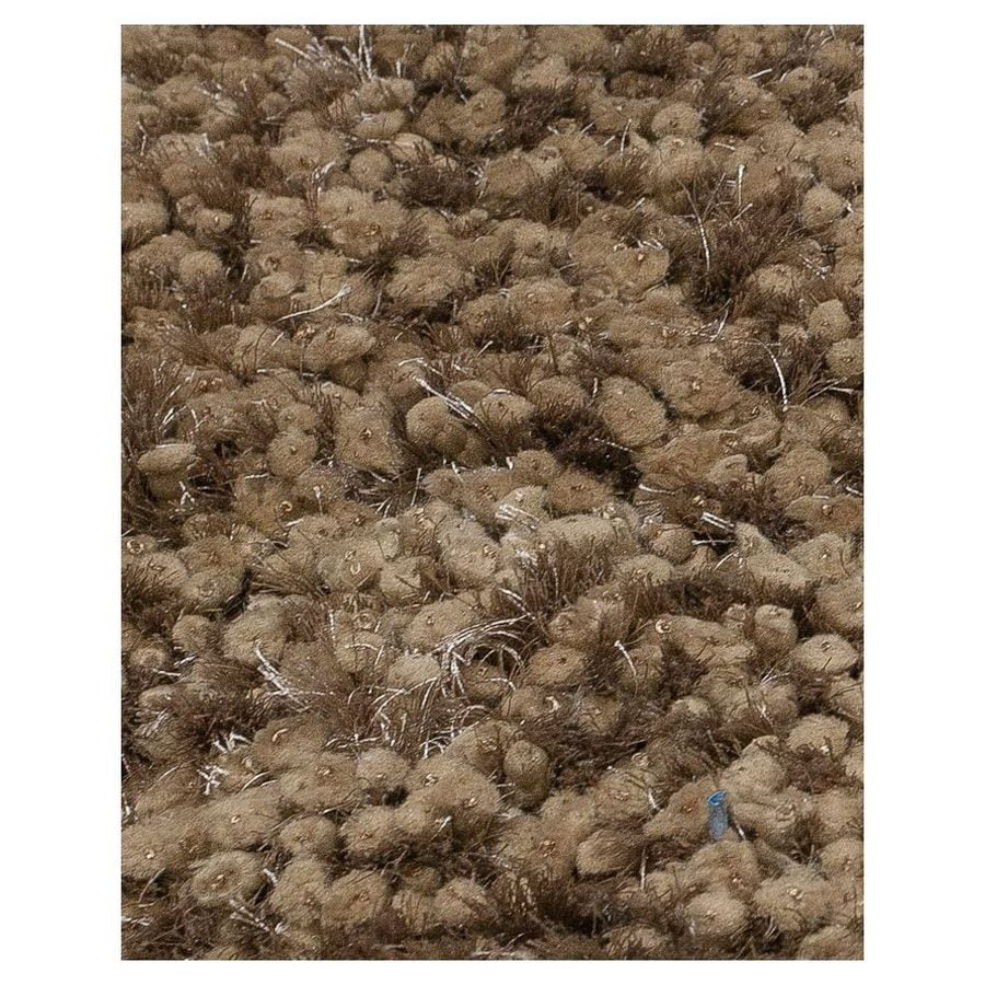 KAS Rugs Classy Shag Rectangular Indoor Tufted Throw Rug (Common: 3 x 5; Actual: 39-in W x 63-in L)