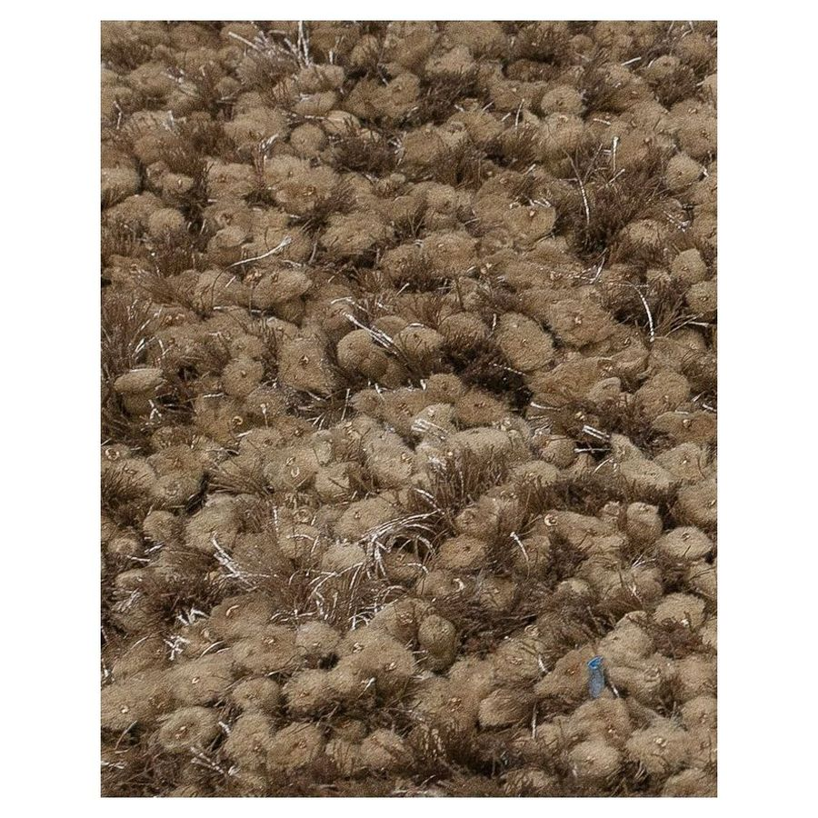 KAS Rugs Classy Shag Brown Rectangular Indoor Shag Area Rug (Common: 5 x 7; Actual: 60-in W x 84-in L)